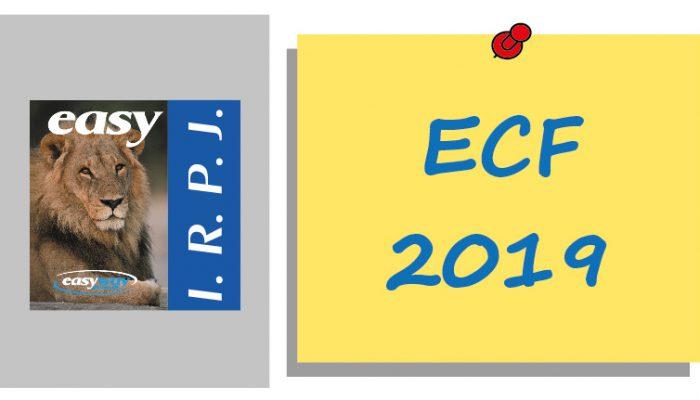 ECF novas regras