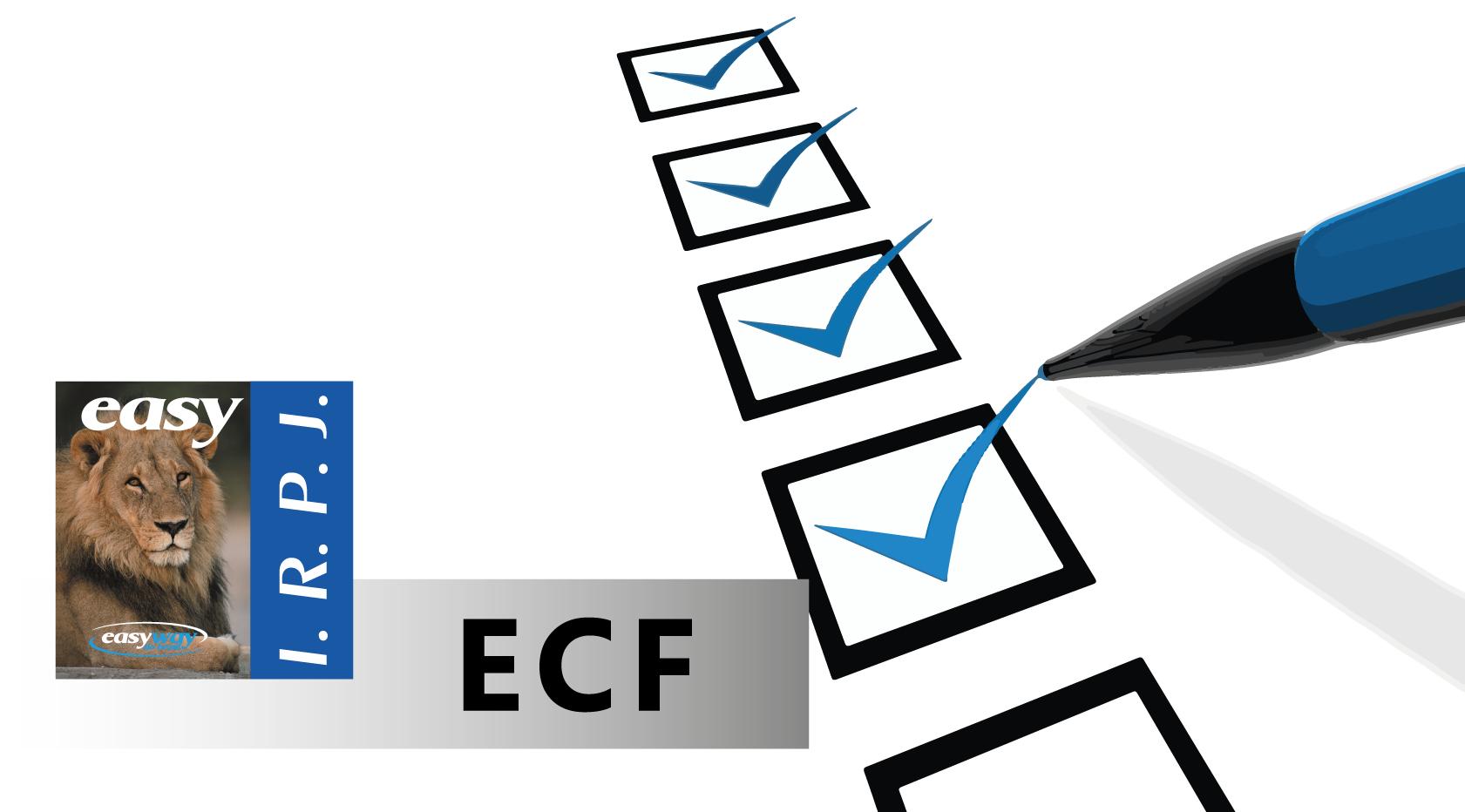 ECF deve ser entregue até 30 de setembro